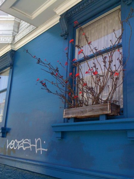 Window Boxes Spruce up City Streets