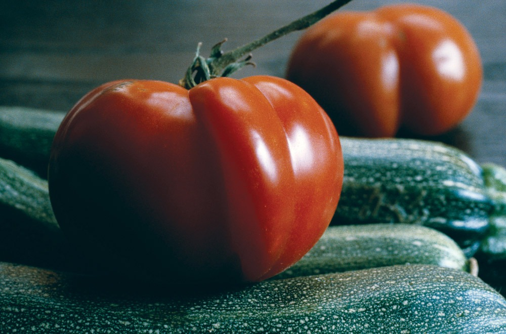 san diego vegetable gardens tomatoes