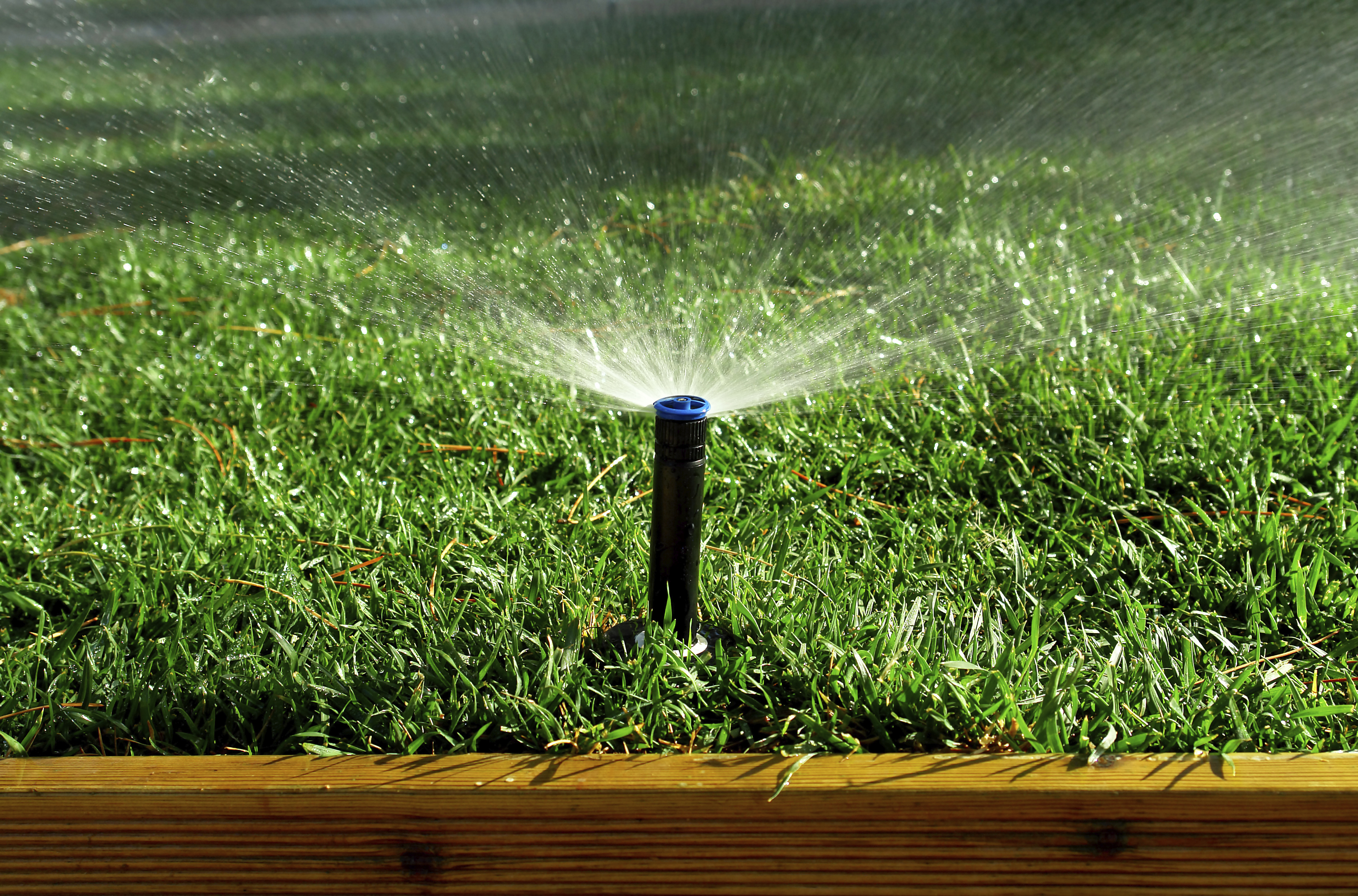 35 easy ways to save water around the house install it direct - Ways saving water watering garden ...