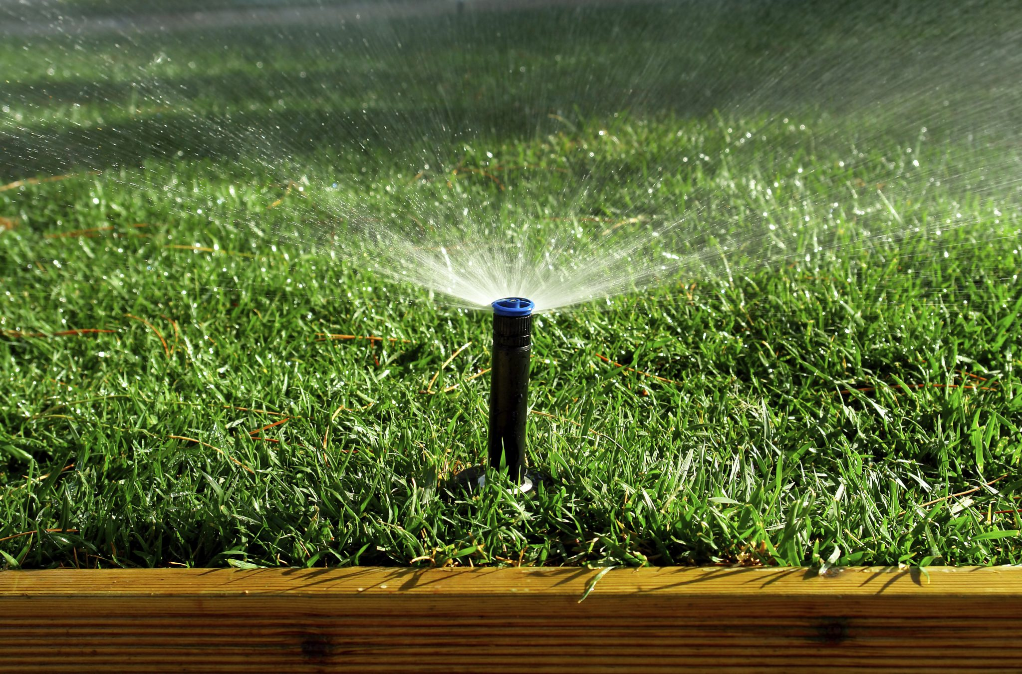 35 Easy Ways to Save Water Around the House