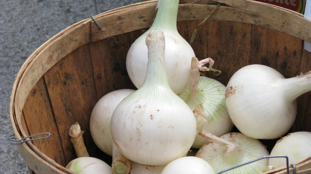 Necks Left on Onions