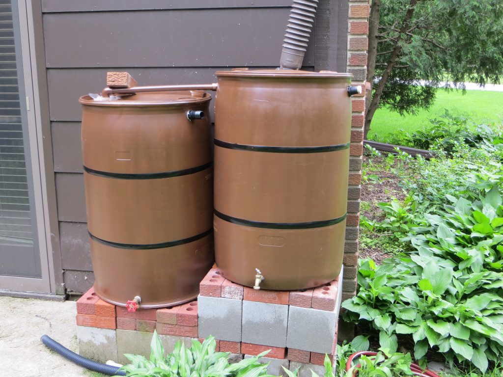 rain barrels and goldfish