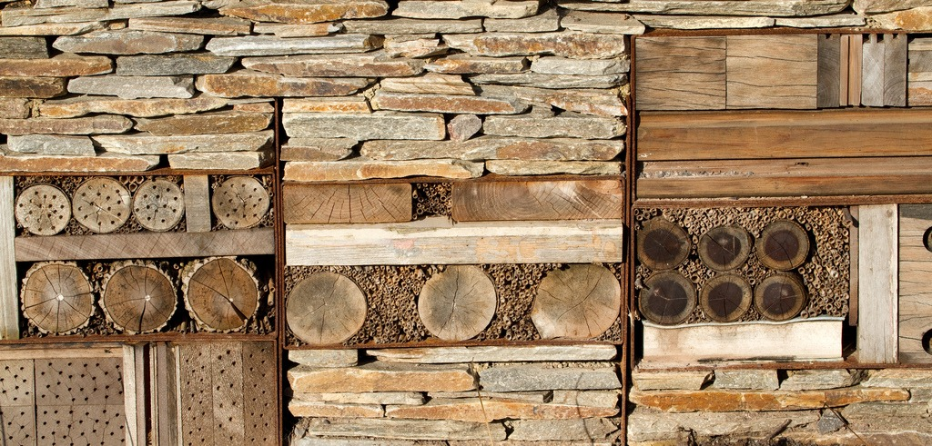 insect hotel wall