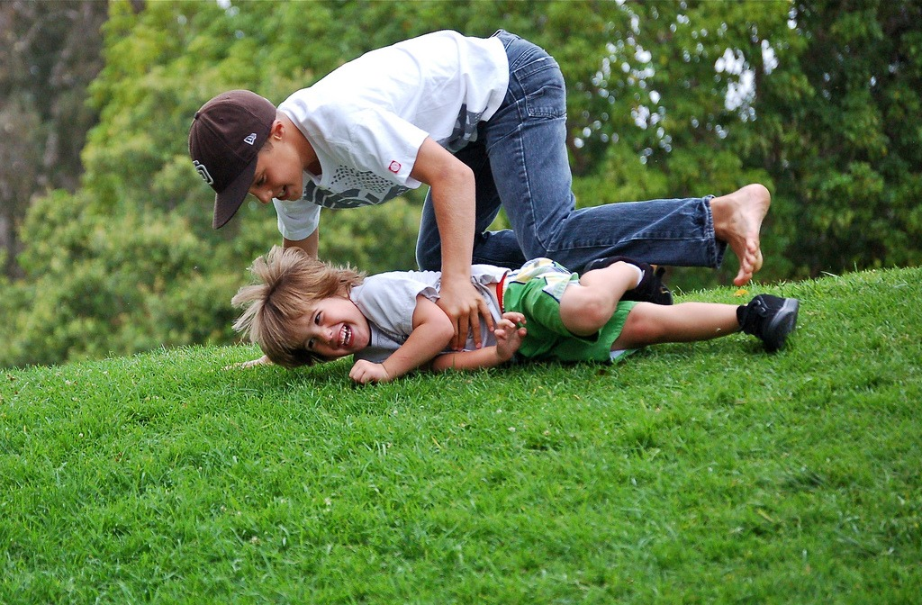 natural playspace grassy hill