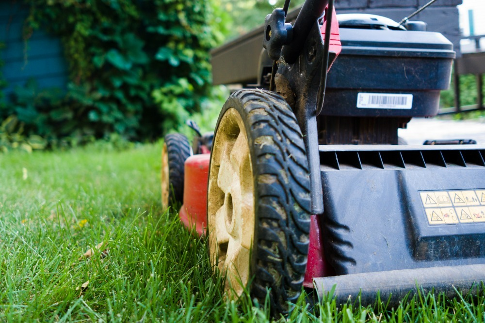 lawn mower on grass