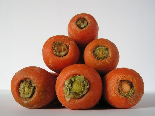 Growing carrots in your backyard