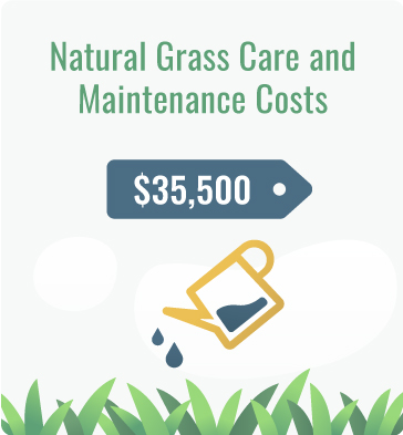 natural grass maintenance cost