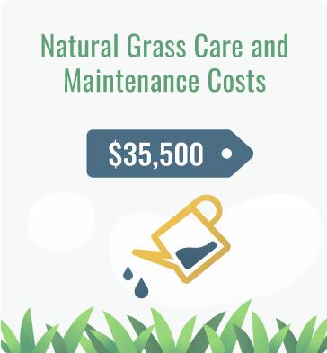 natural grass maintenance cost