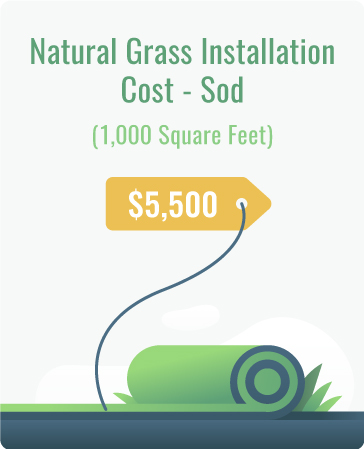 natural grass installation cost