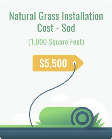 natural grass installation cost