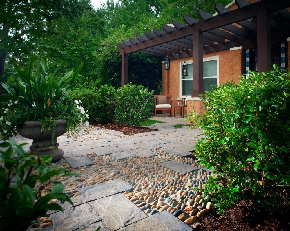 what to plant between pavers