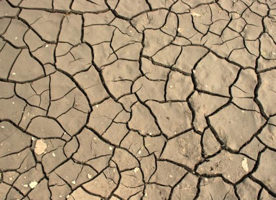Drought in California