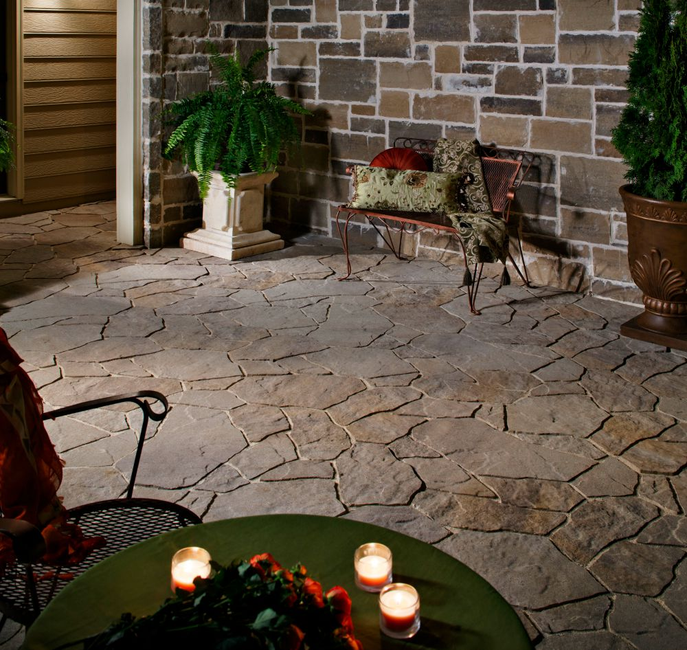 Container plants on a paver patio