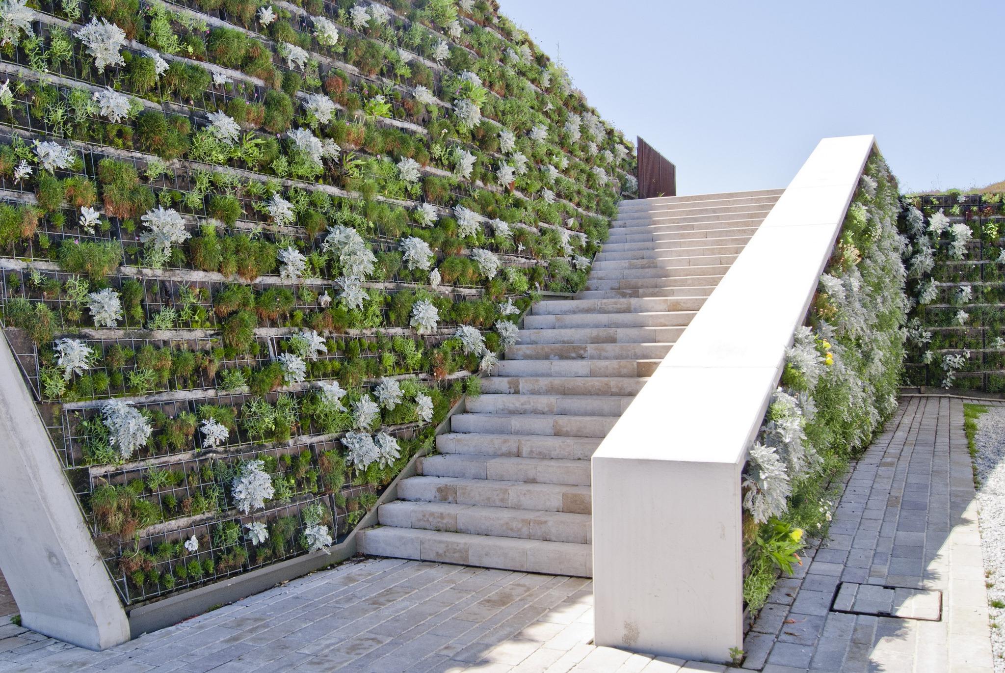 Living Wall Decor Ideas