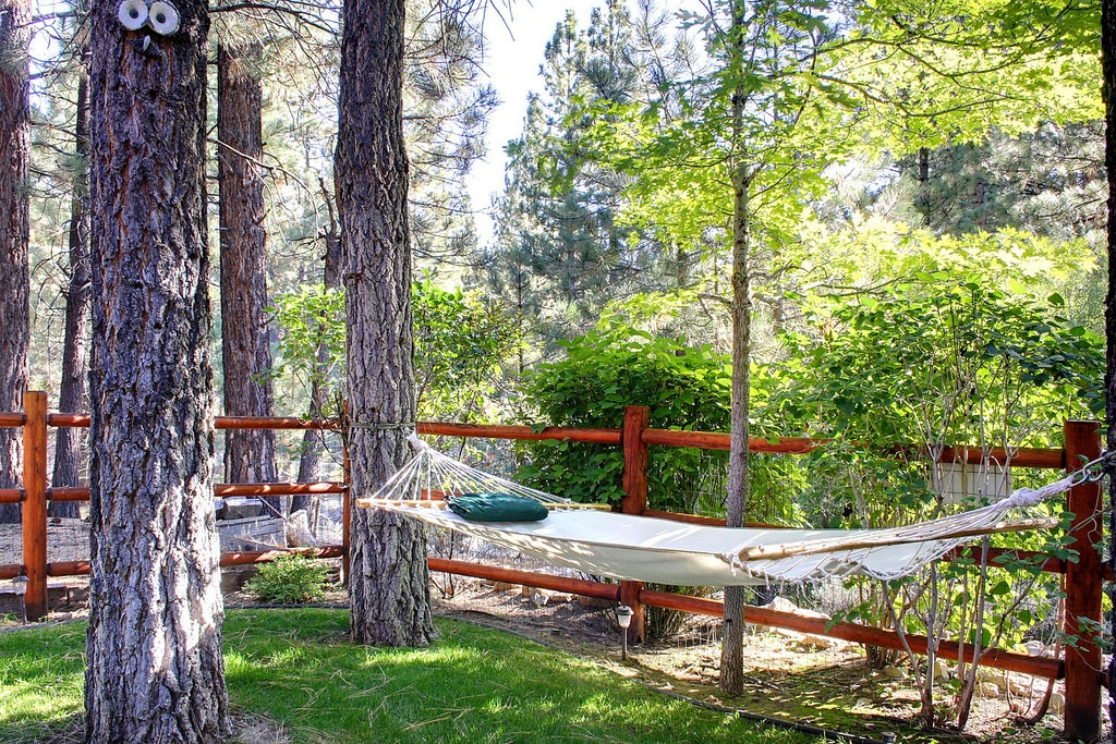 Backyard Outdoor Hammocks
