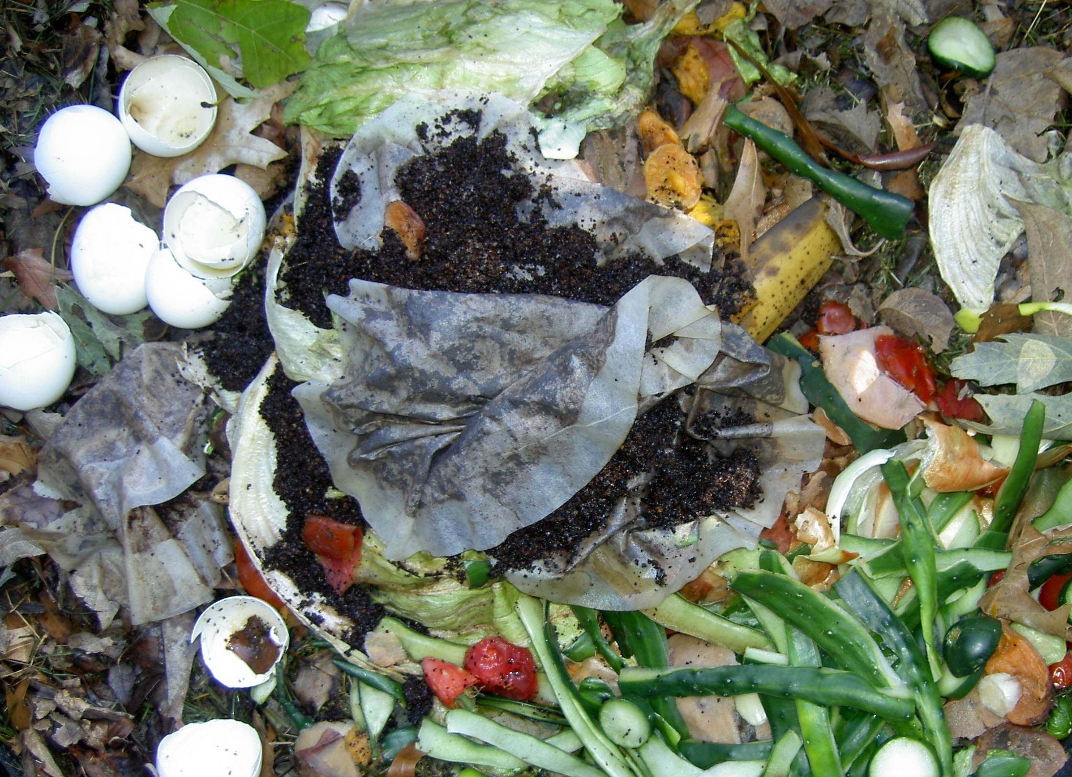 Kitchen Scrap Gardening How To Get Free Fertilizer Flowerbeds Gardens Lawns Install