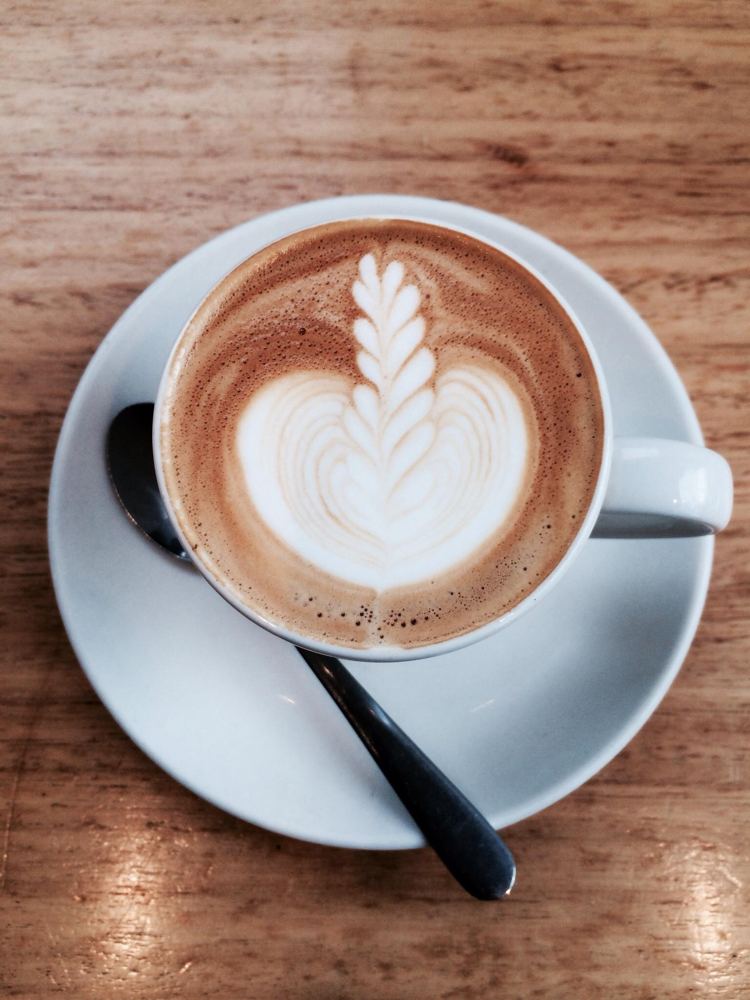 Coffee Grounds Add Nitrogen to Soil