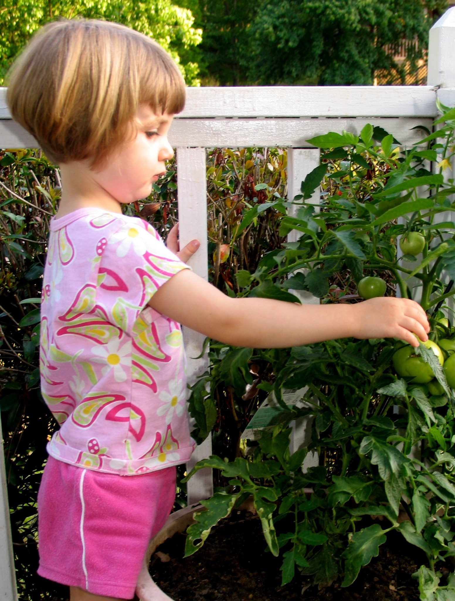 Get kids outside with gardening