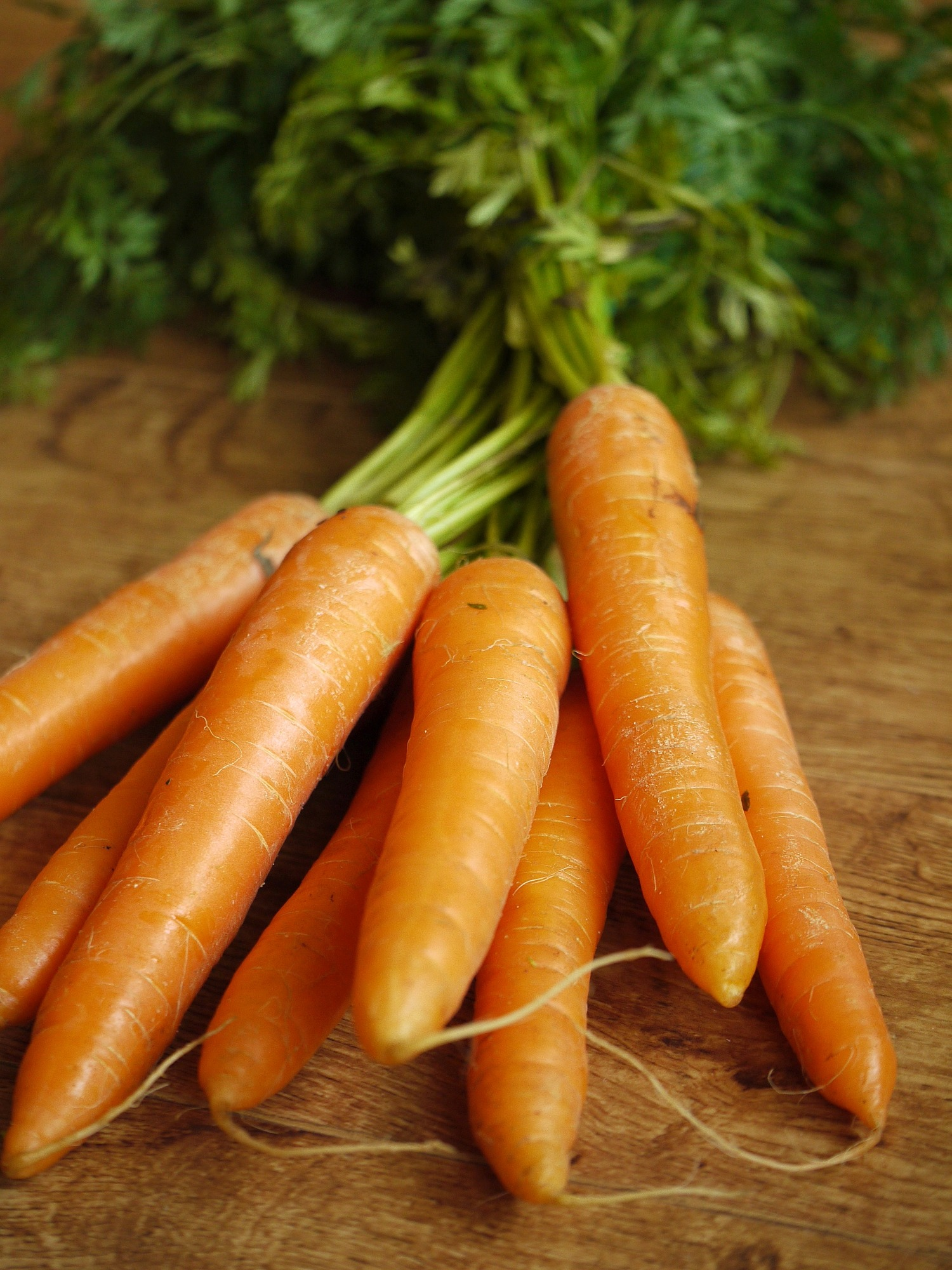 Juicing Garden Carrots