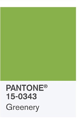 Pantone Greenery Color of the Year