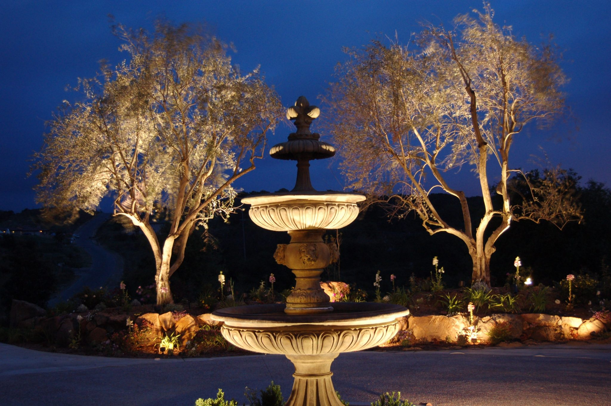 Landscape Lighting for Water Feature