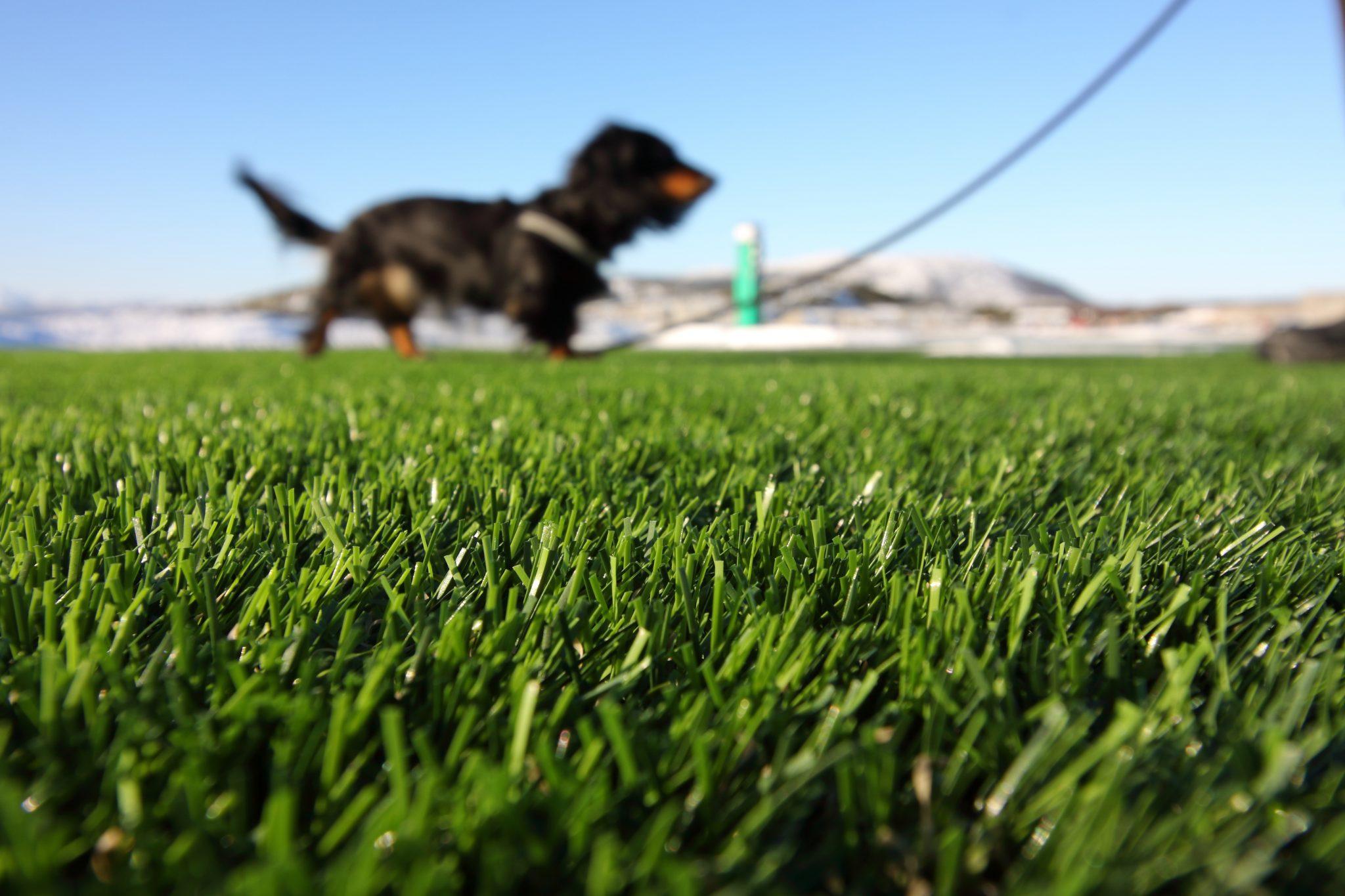 artificial grass repairs