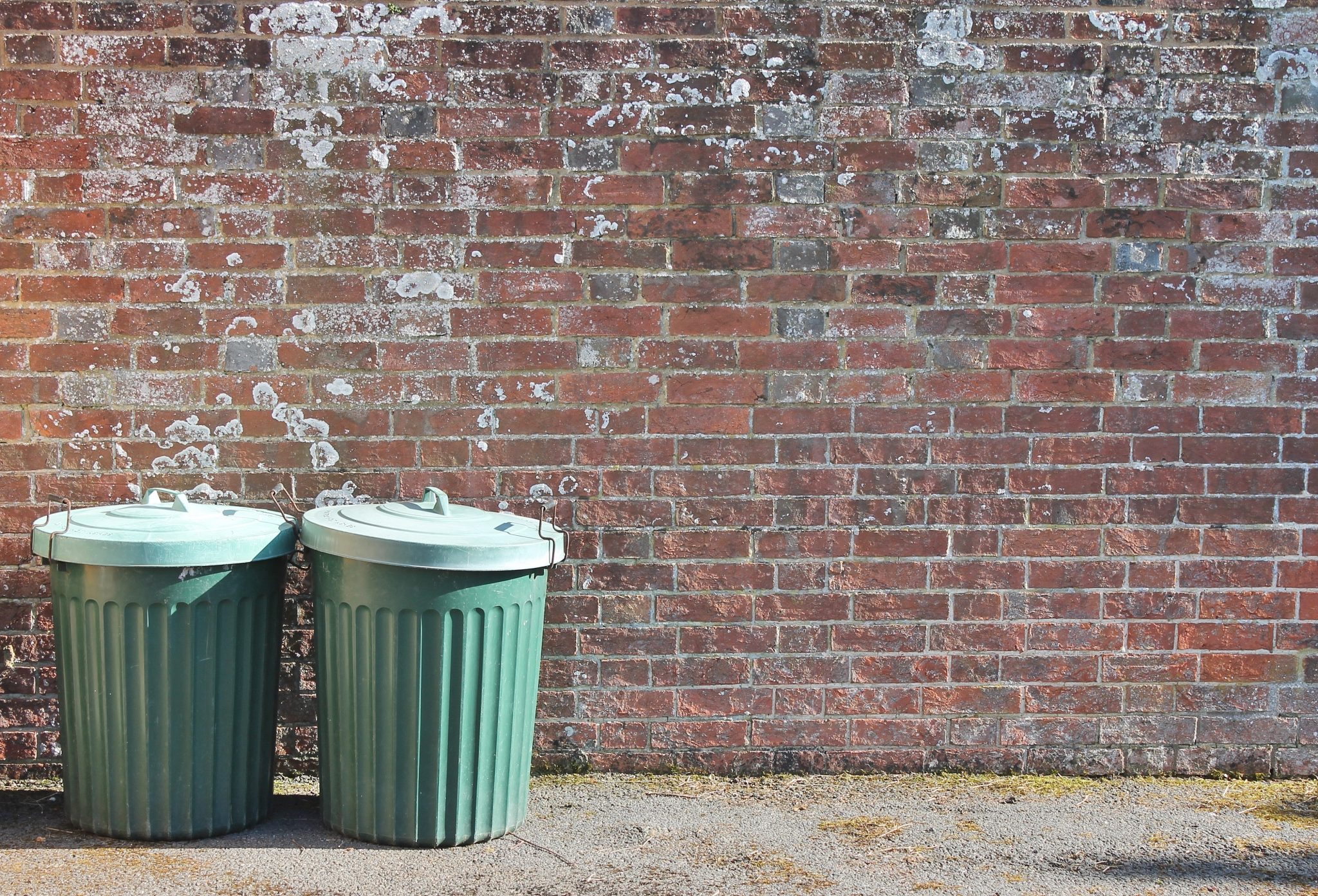 trash can bin cleaning