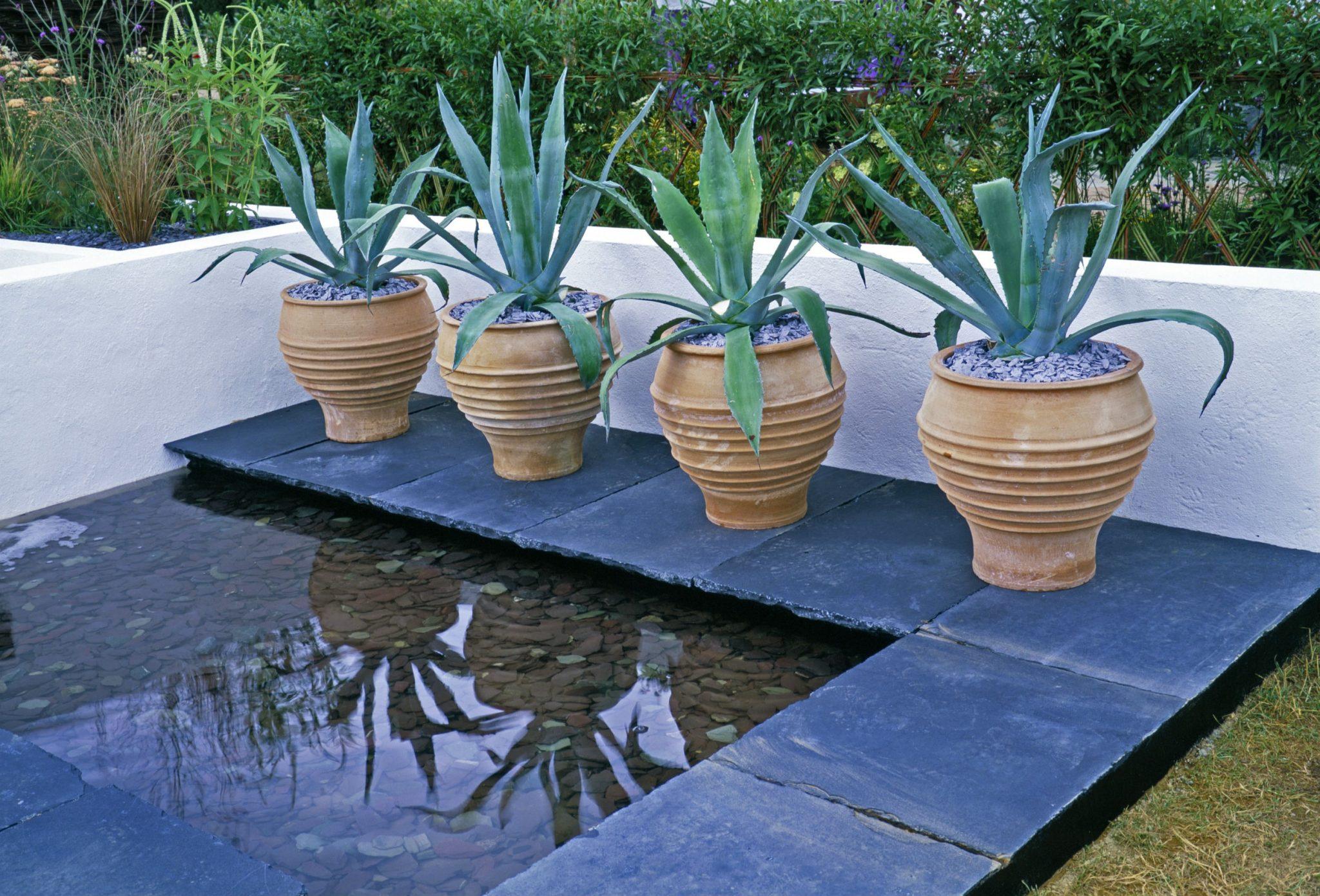 container garden pots