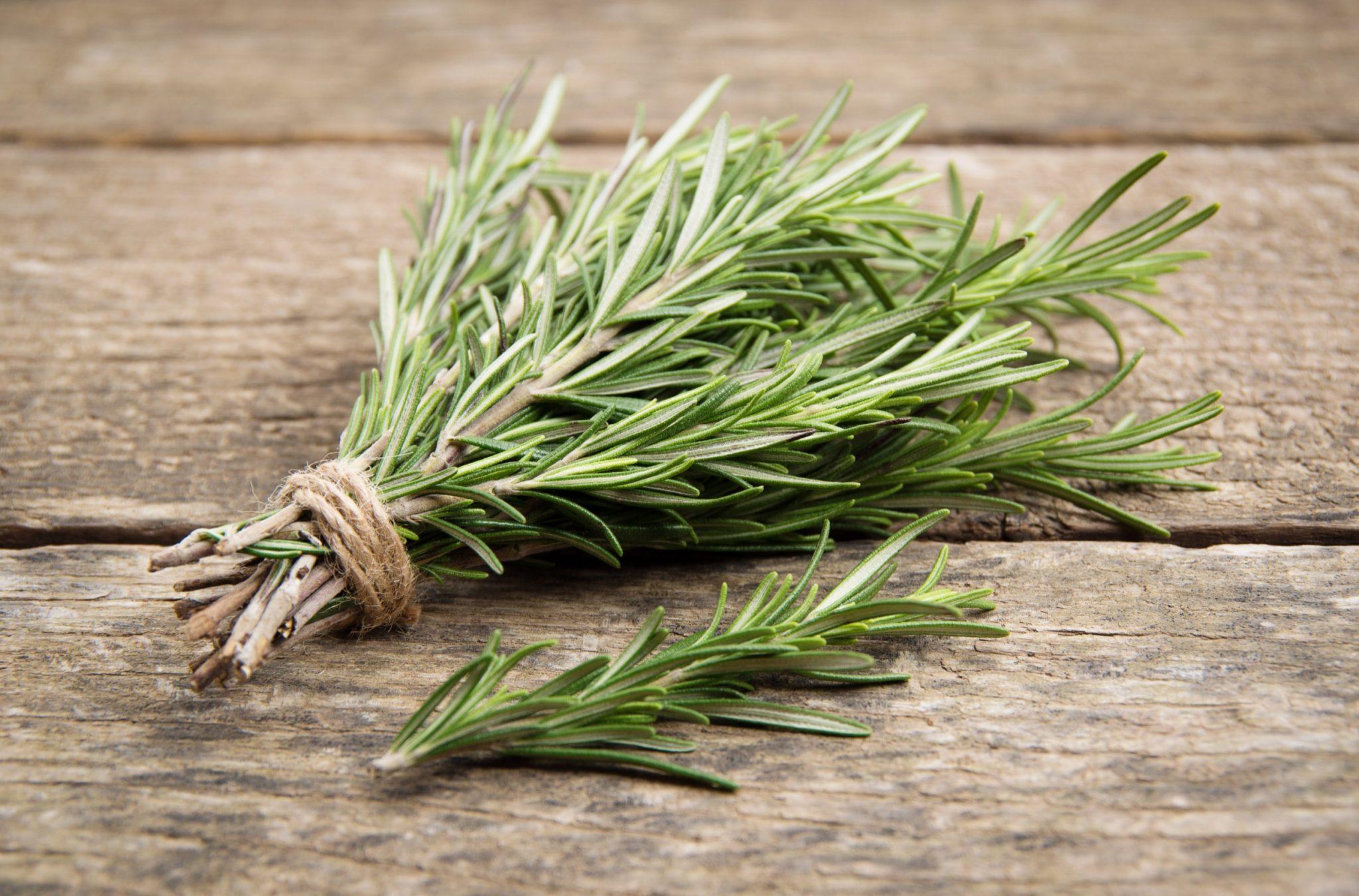 Ornamental Herb ideas