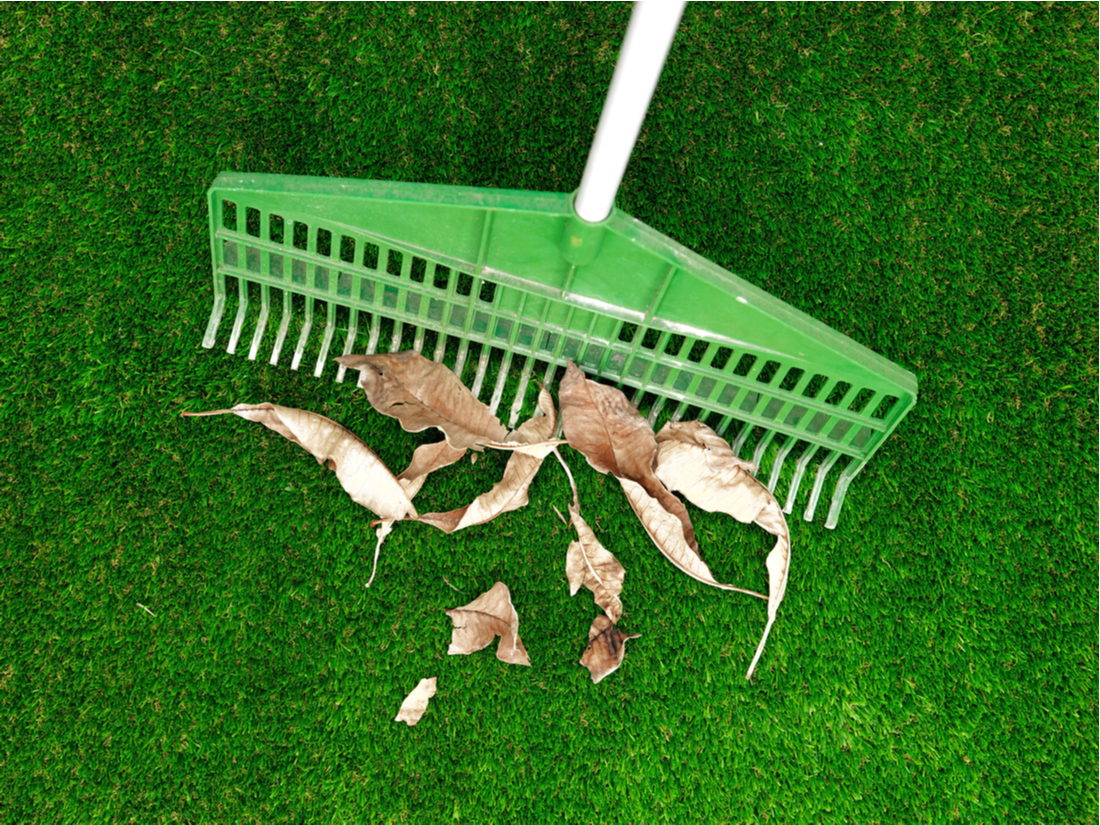 Can You Vacuum Artificial Turf