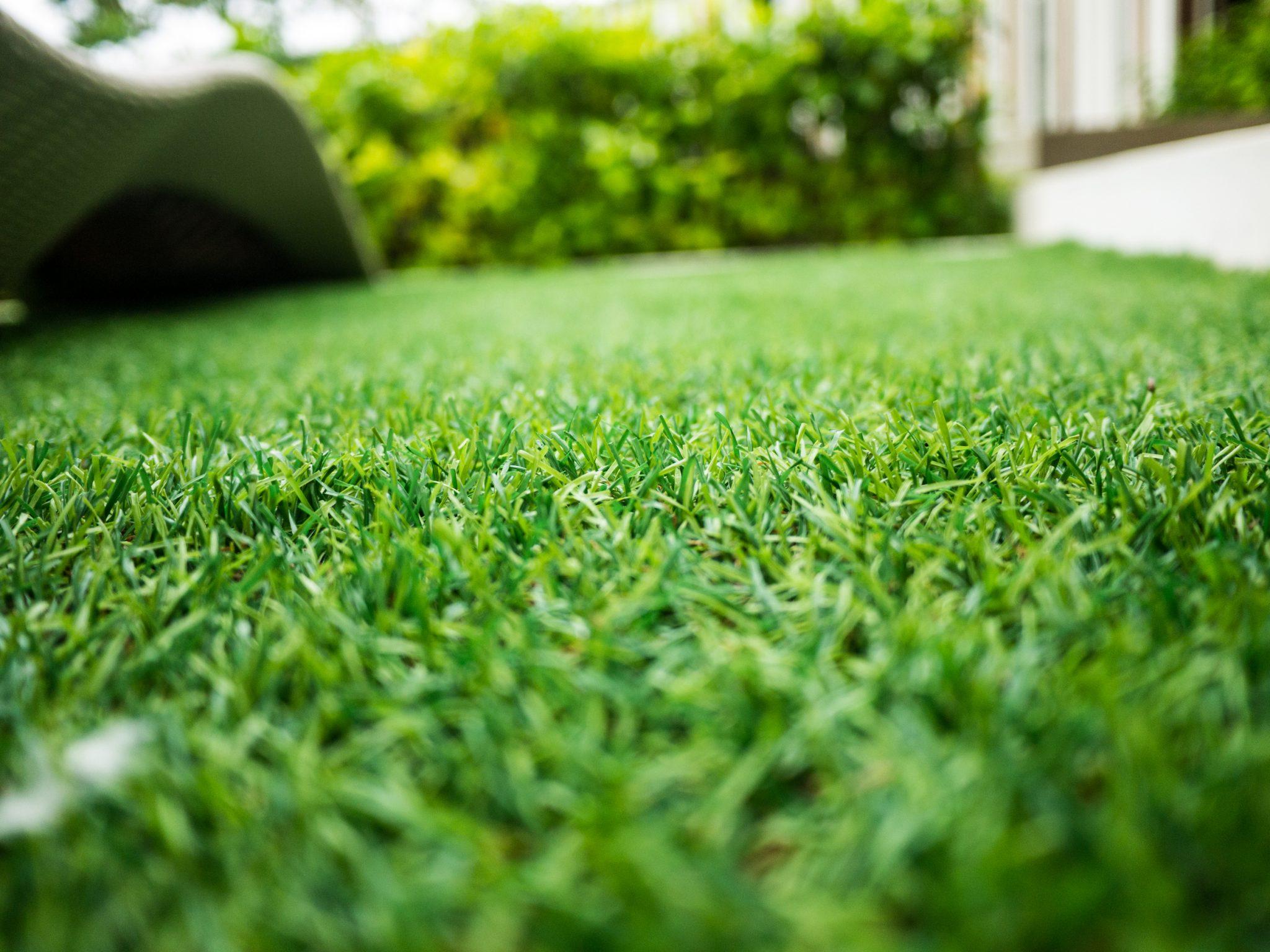 artificial grass infill