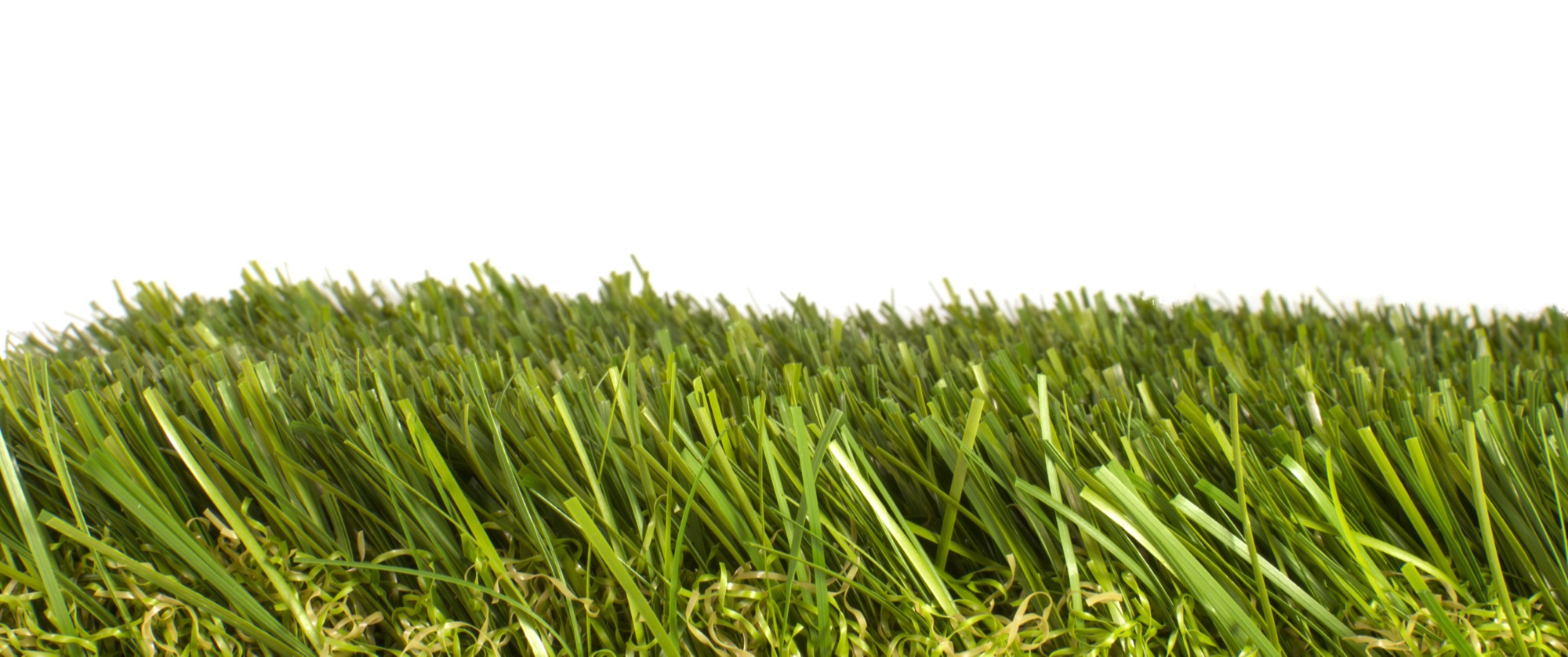 Does Artificial Grass Get Mold