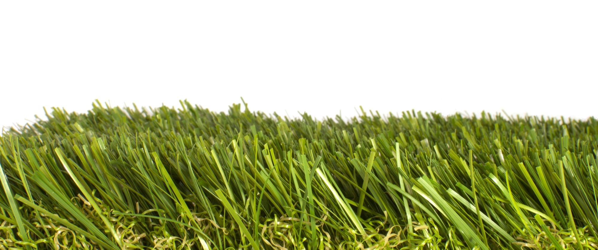 Does Artificial Grass Get Mold
