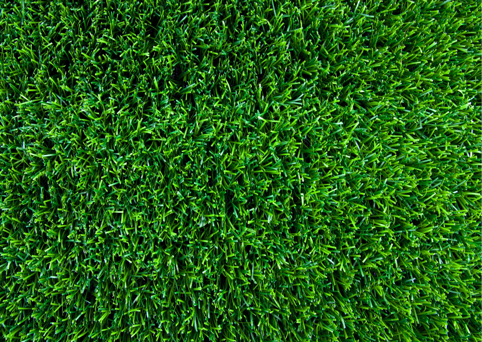 Face Weight Artificial Grass