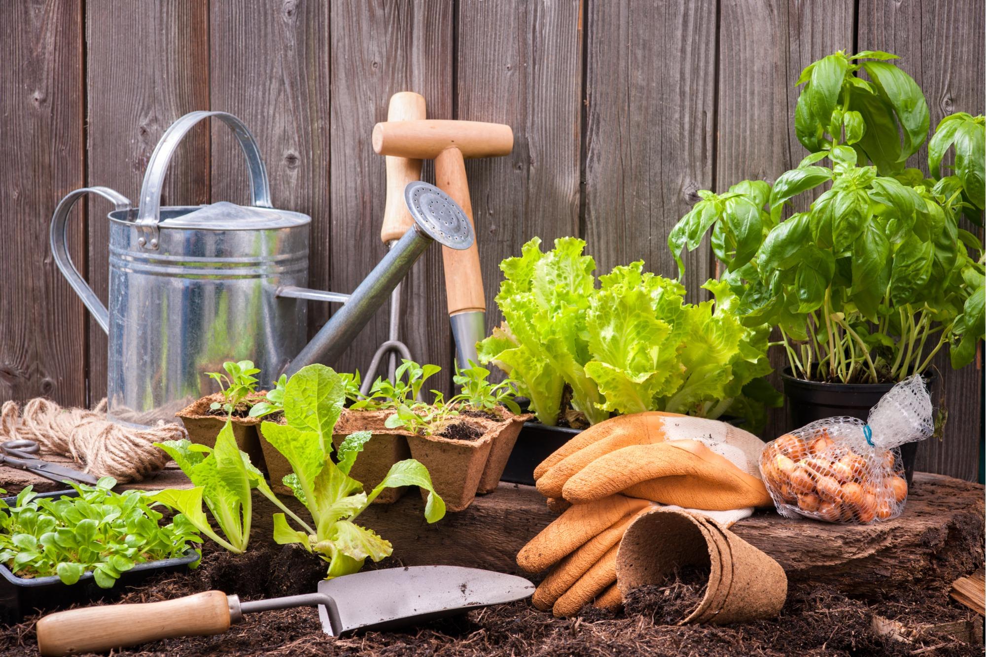 gardening potting bench
