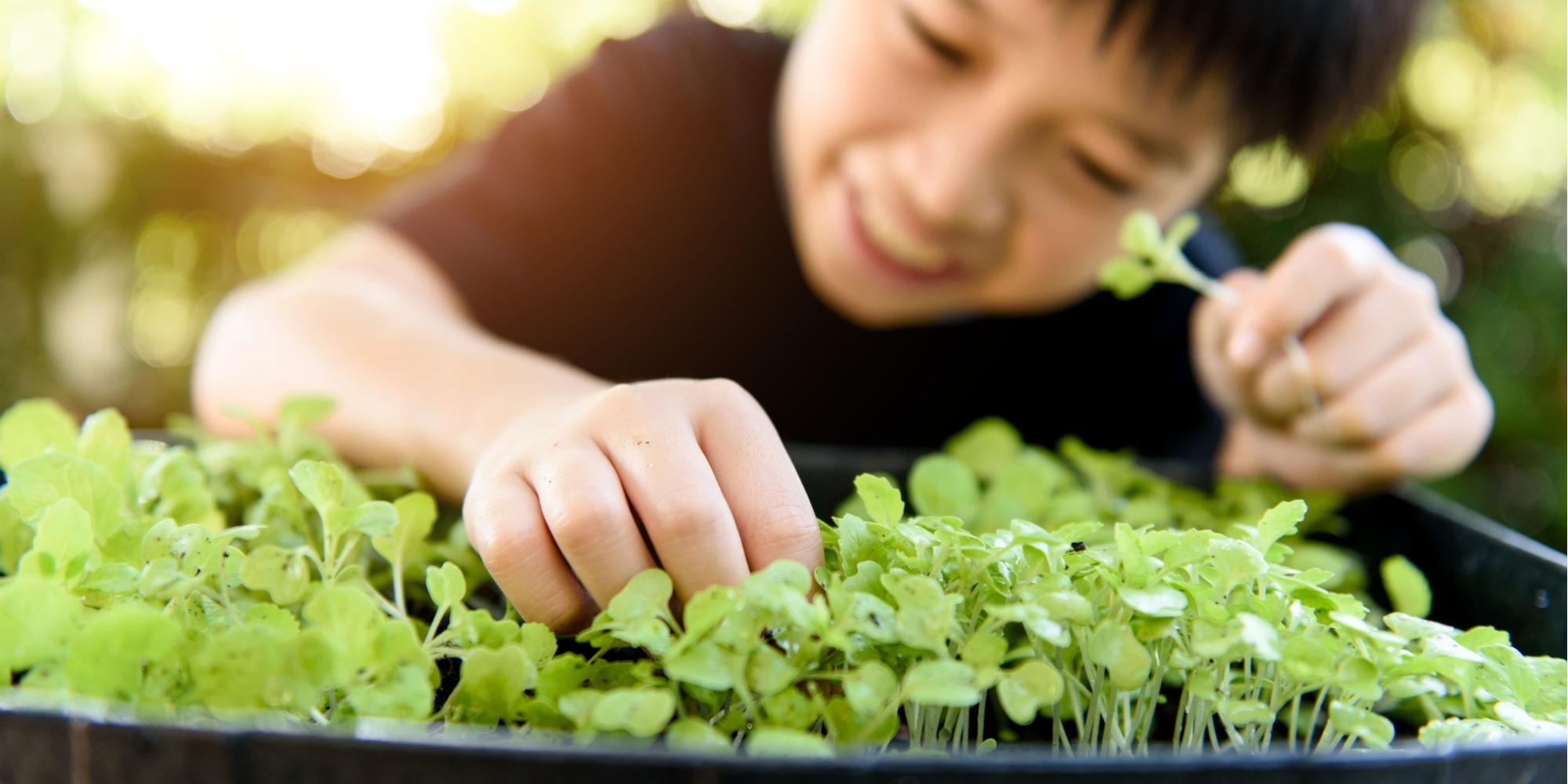 gardening with kids ideas