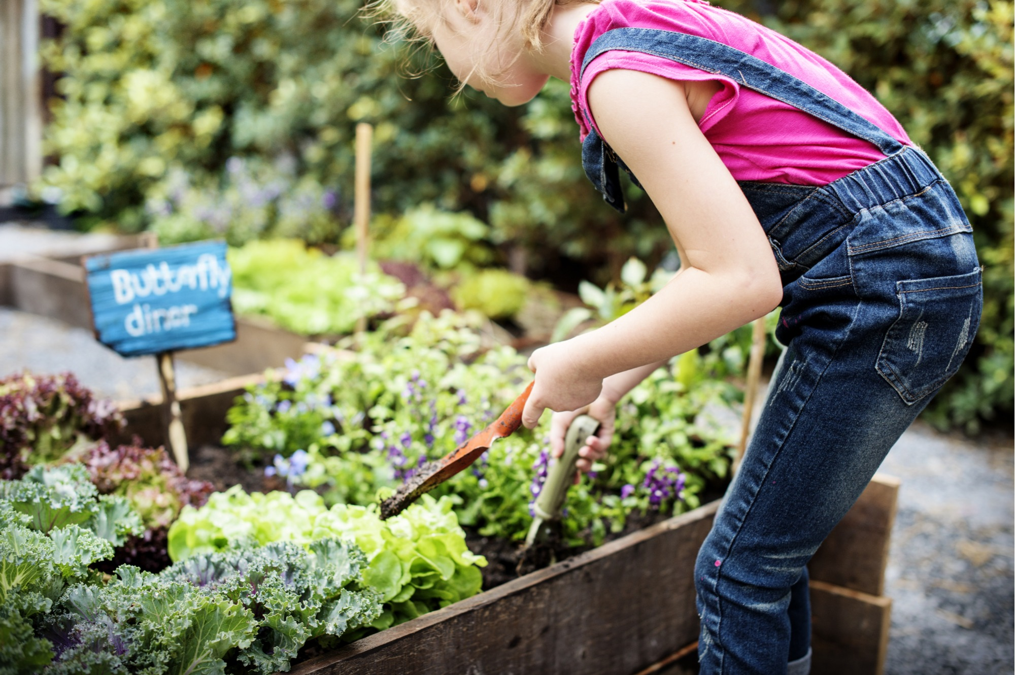 10 Plants to Grow with Kids (Kids Gardening Guide ... on Gardening  id=74172