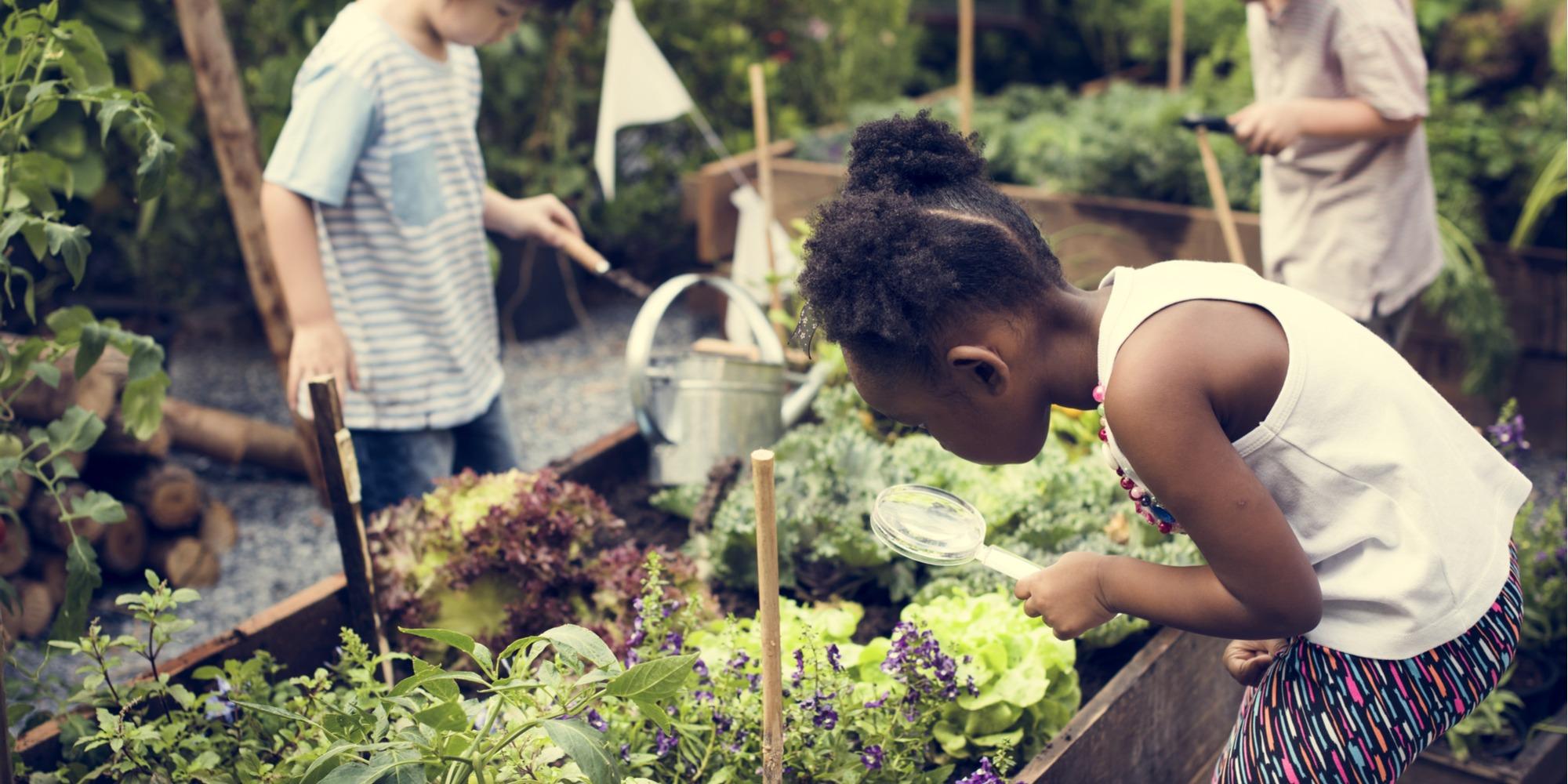 kids gardening tips