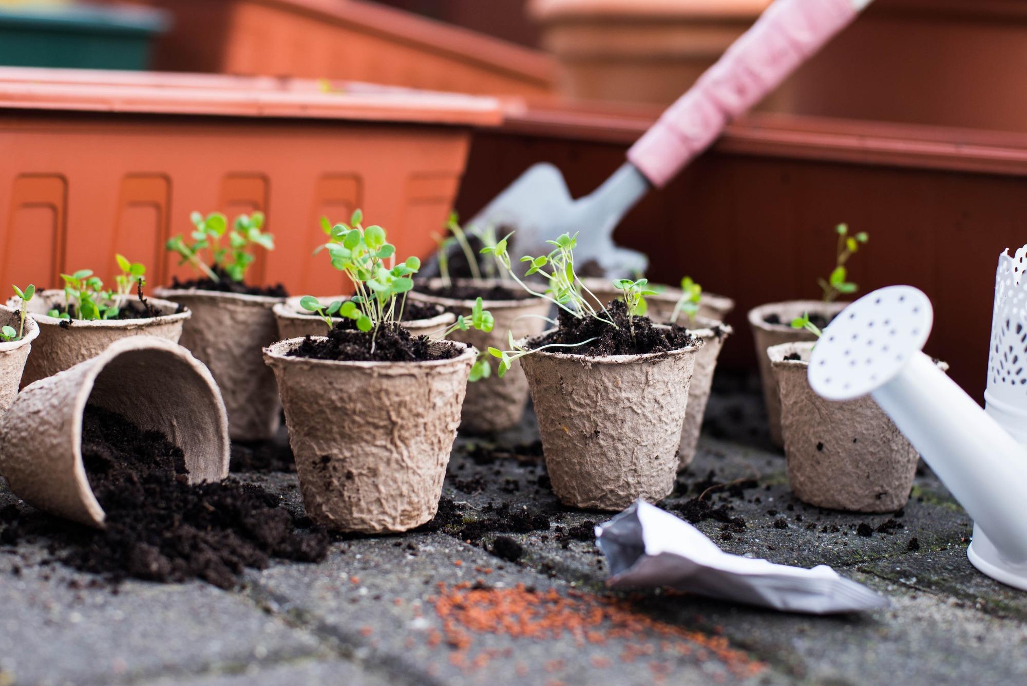 potting bench for gardening