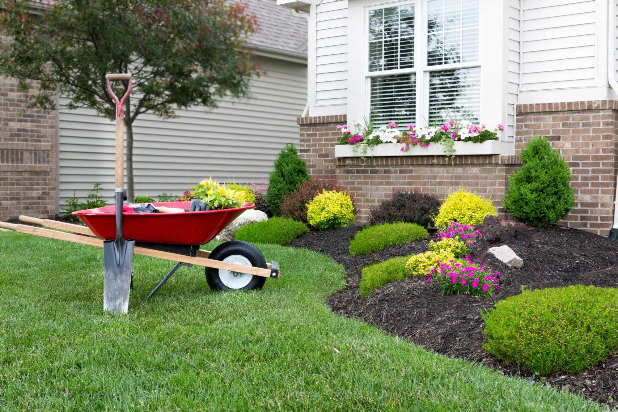 Avoid Back Pain from Gardening