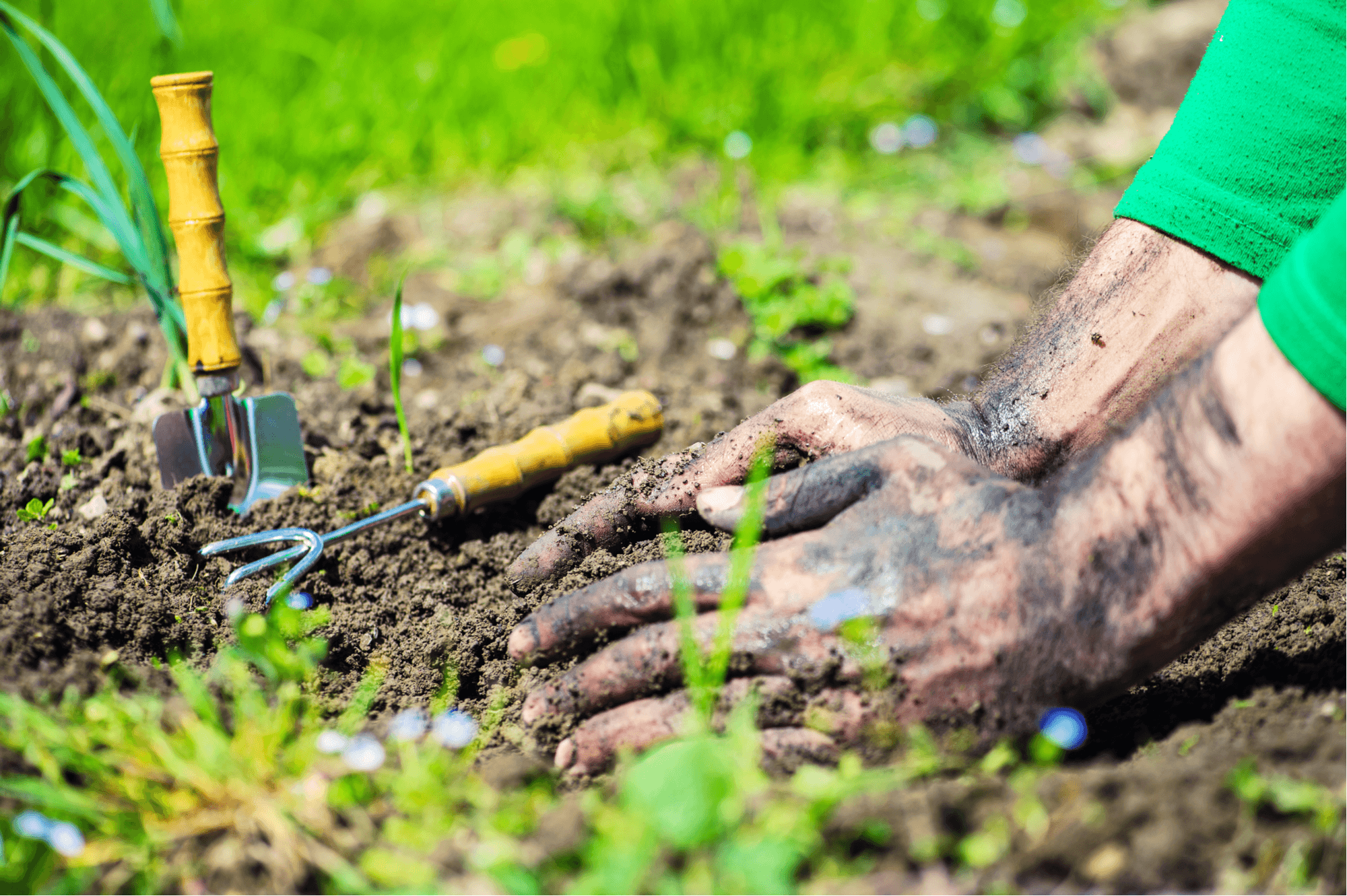Hand Care for Gardeners