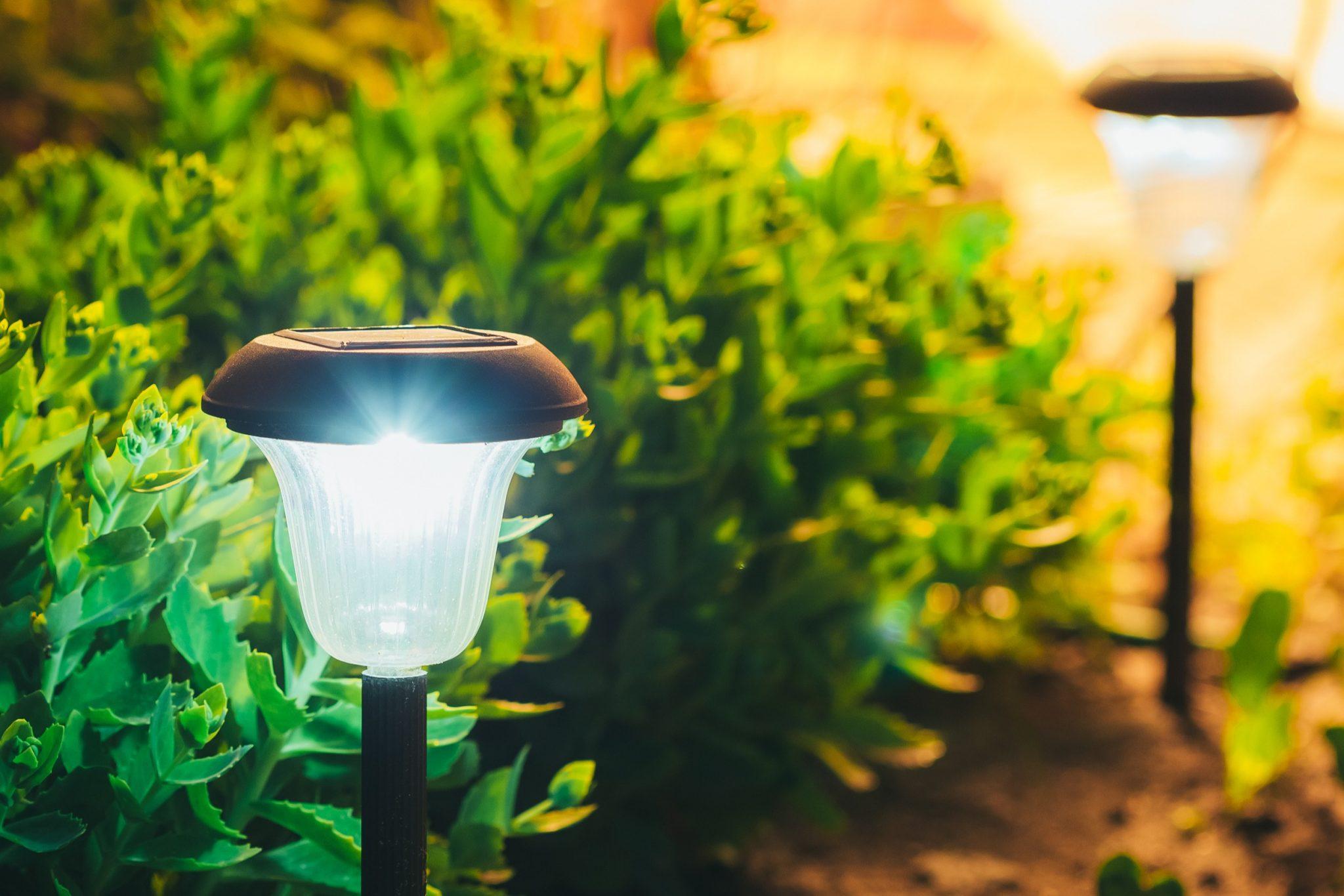 solar landscape lighting near garden