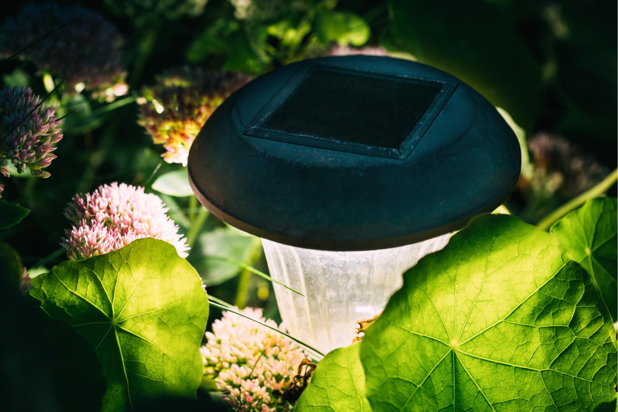 solar landscape lighting tips