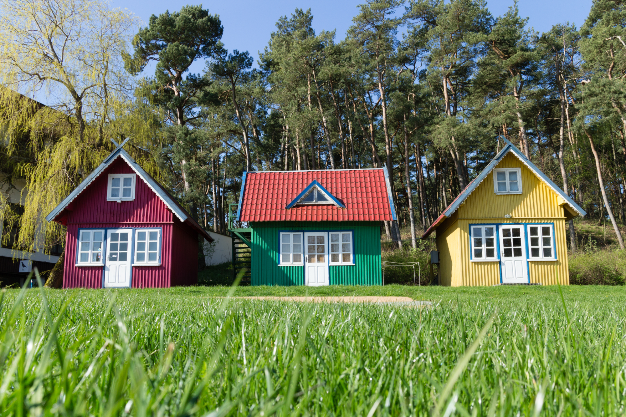 Tiny House Landscaping