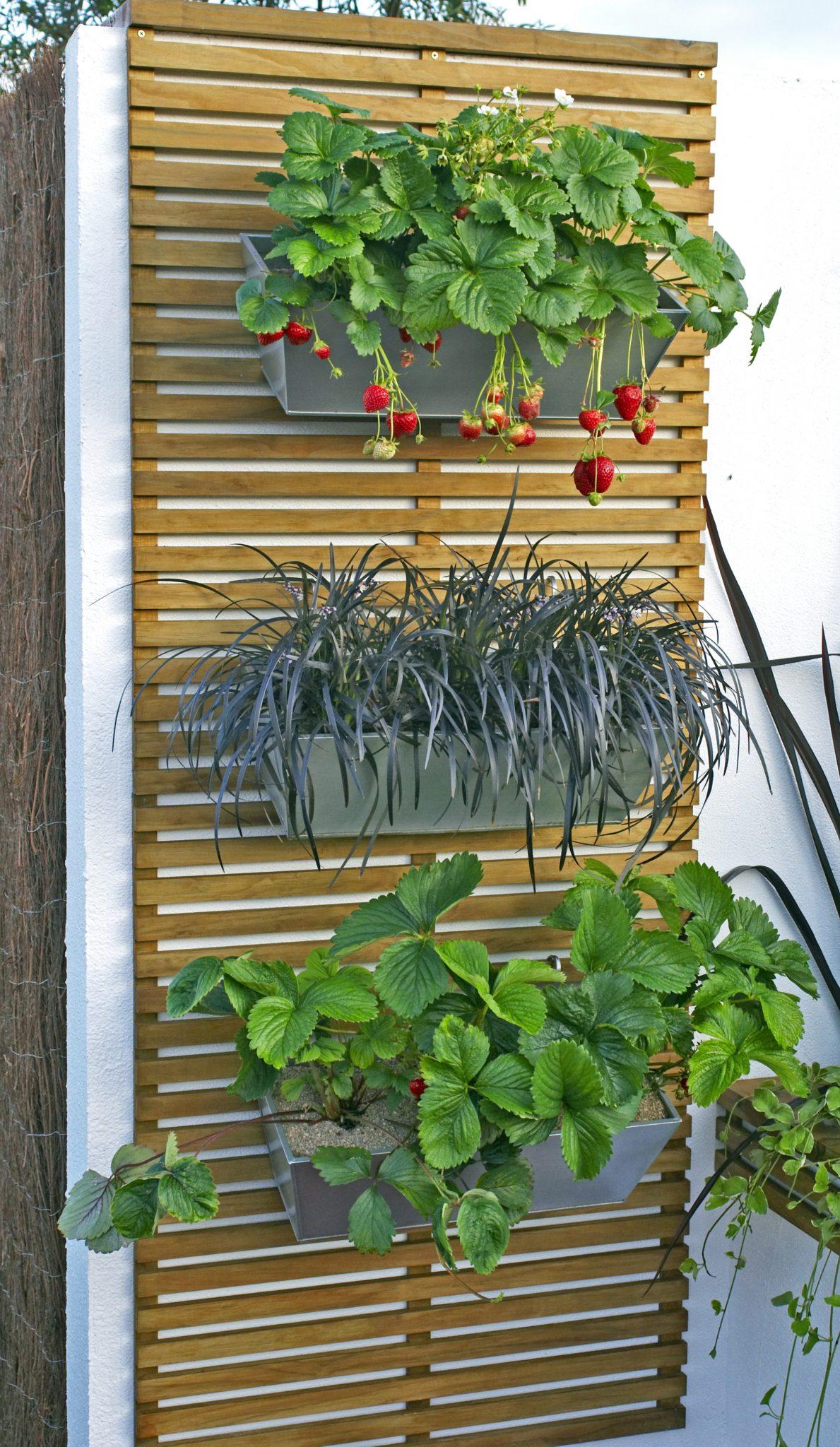 patio ideas 2018
