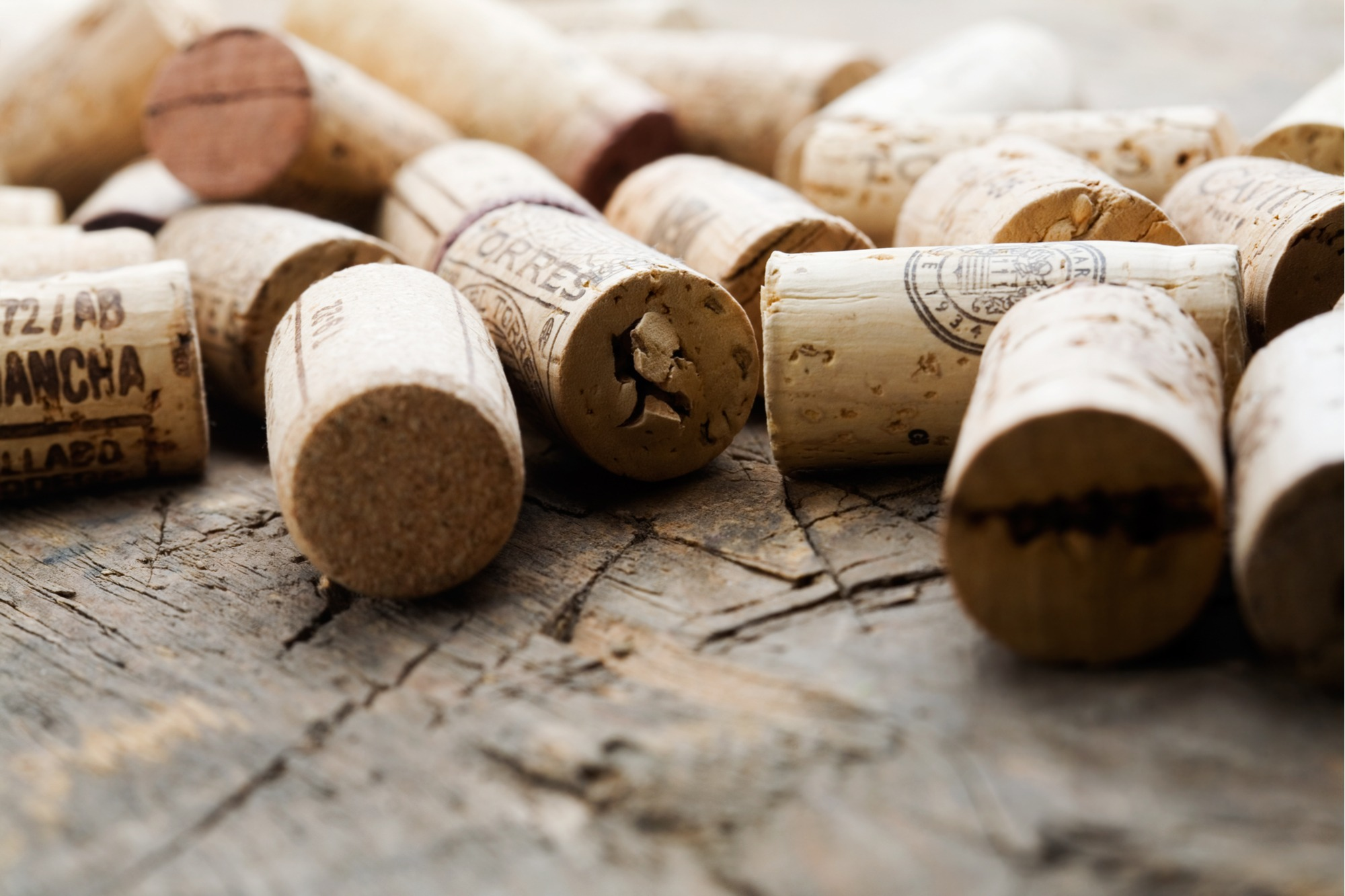 wine tasting party decor tips