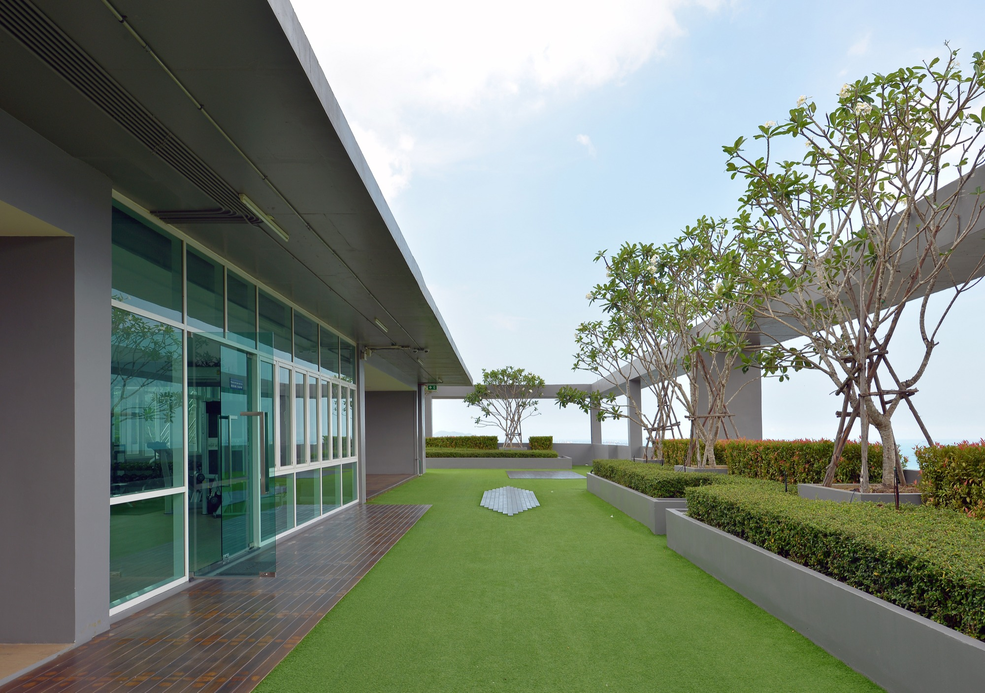 artificial turf rooftop