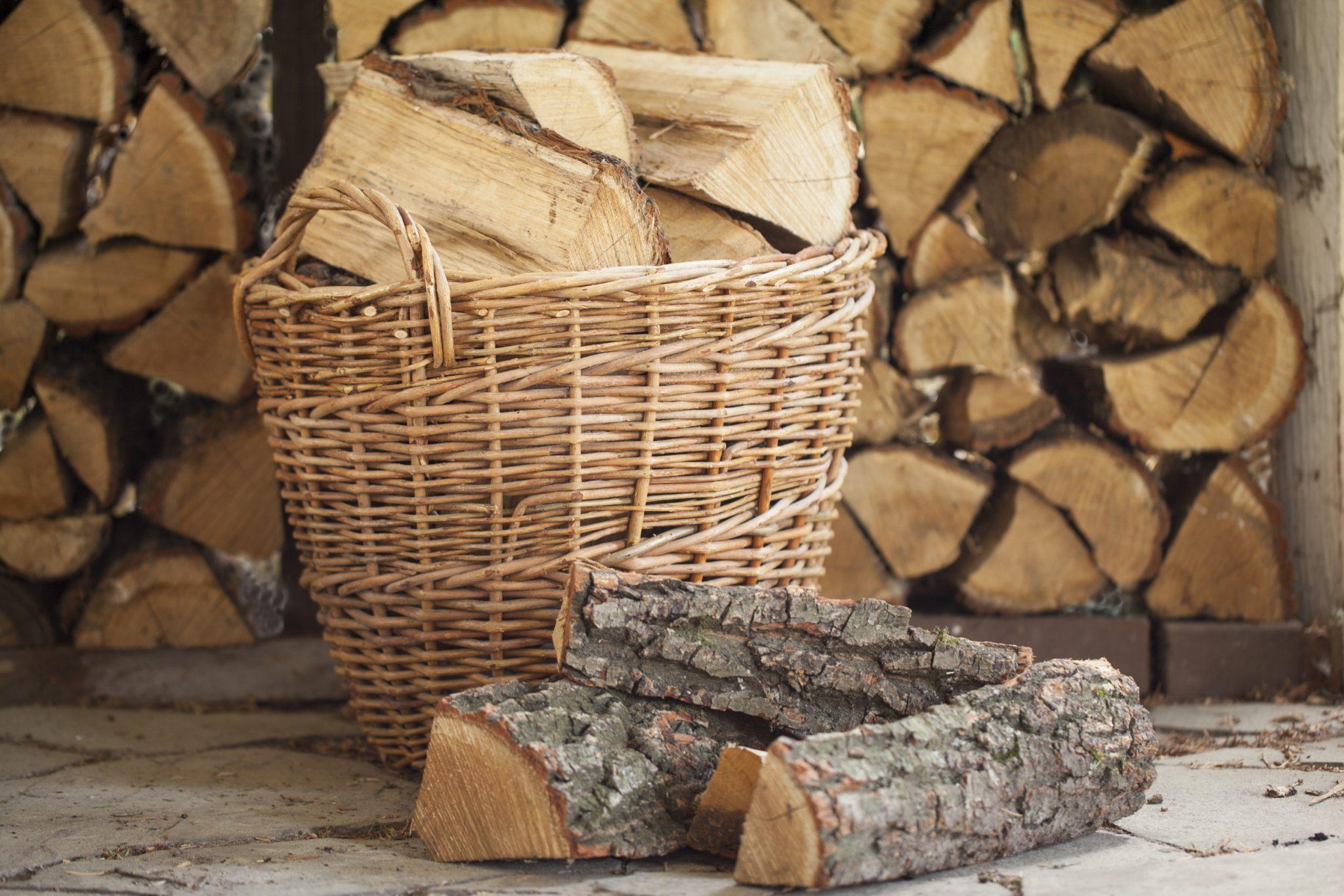 Best Firewood Options