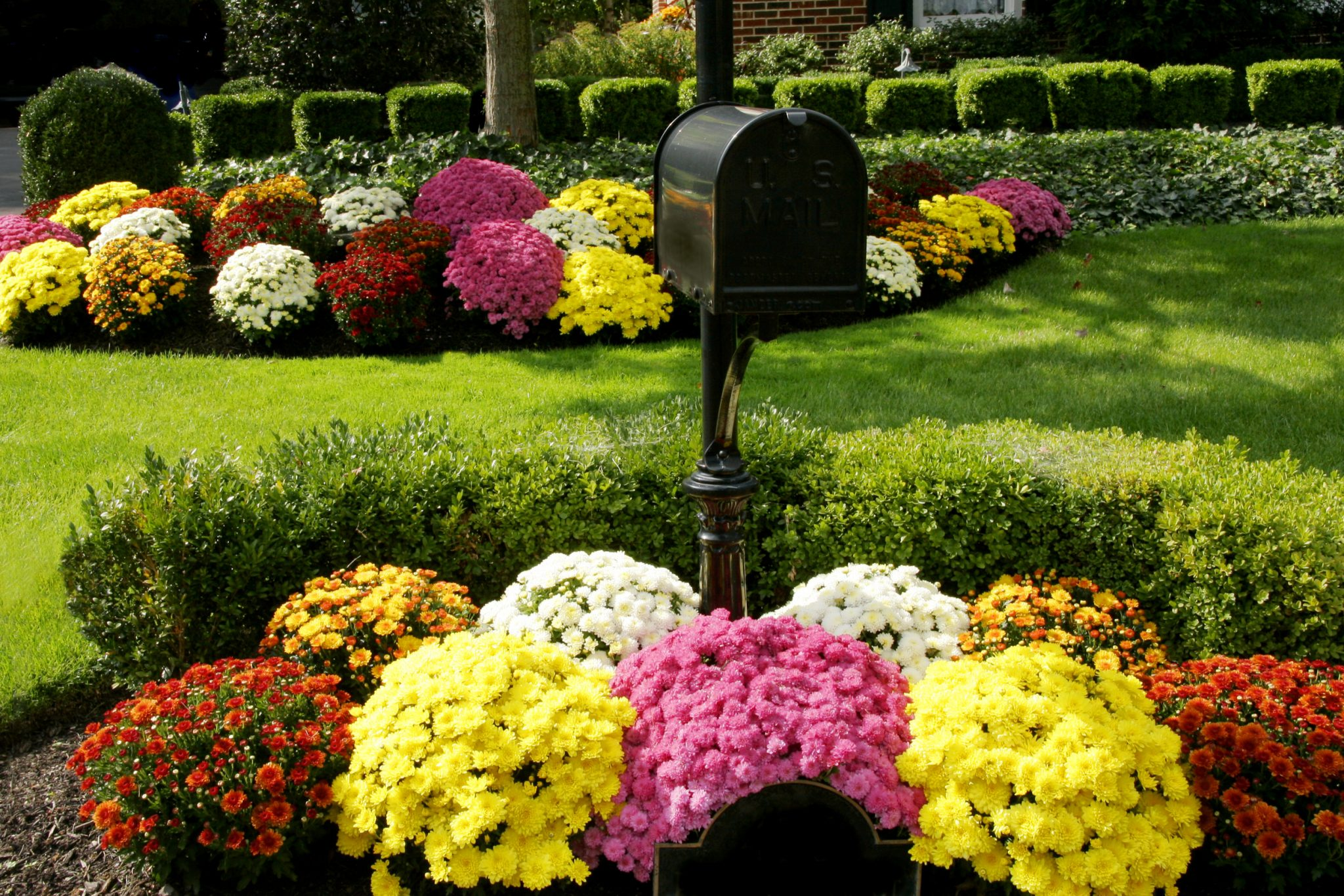 30 Flower Bed Ideas For 2020 Install It Direct