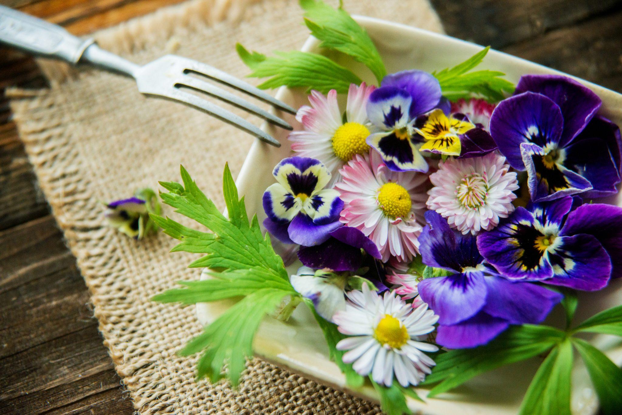 flower bed images
